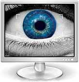 Eye in Monitor-for-SW-banner.jpg